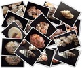 Thumbnail Sea Shells - Stock Photos