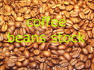 Coffee Beans - Stock Photos