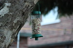Bird Feeder 2 - Stock Photo