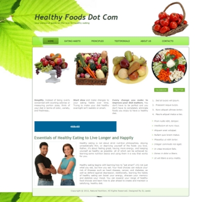 Product picture Healthy Food Web Template 2012